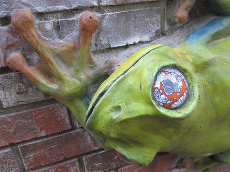 concrete frog climbing a wall
